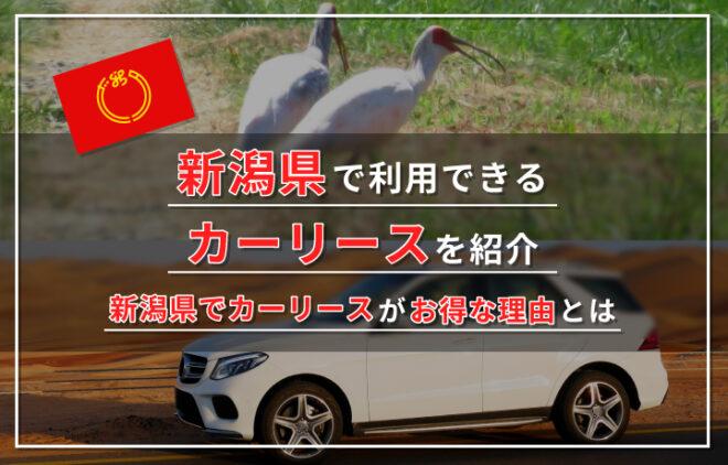 新潟県でおすすめのカーリース業者を紹介